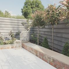 t is so lovely to come home when the sun is shining and sit out here.and I can't believe how healthy my trees look! City Garden, Small Gardens, Garden Design, New Patio Ideas, Garden Planning, Cottage Garden, Garden Spaces