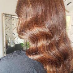 Brown Hair Inspo, Gold Brown Hair, Mahogany Brown Hair, Honey Brown Hair Color, Light Golden Brown Hair, Chestnut Brown Hair, Hair Color Caramel, Brown Blonde Hair, Brown Hair Colors