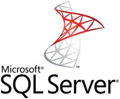 SQL Server Logo Mark and WordMark Vertical