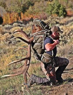 The hard work of the hunting success is more  harder work!  :)
