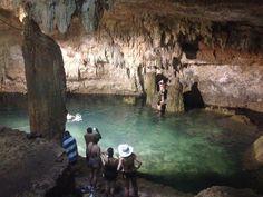 Cenote Choo-Ha, Quintana Roo, Mexico - Snorkeling in cenotes is...