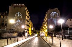 Paris Street Art Displays Humanlike Animal Images | Architectural Digest