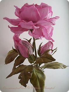 Розочка садовая фото 4