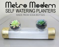 Self Watering Planters From Soda Bottles