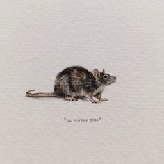 Lorraine Loots, Monster street rats