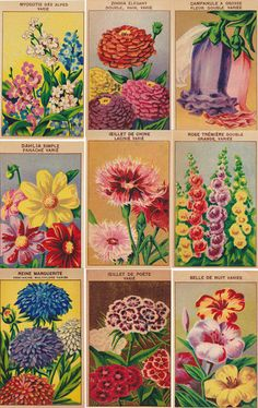 24 Vintage French Flower Seed Packet Labels Set 2 from simplyfrenchvintage by…