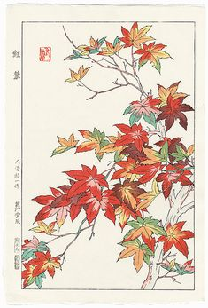 Autumn Maple Leaves by Kawarazaki Shodo (1889 - 1973); Japanese woodblock print............................ ukiyoe japan decoration antique fineart home decor collectible japanese woodblock print handmade home art beautiful decorative etching illustration traditional woodcut
