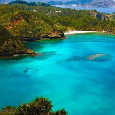 Welcome A L O N I S S O S #caves #griechenland #landscape #ecosystem #alonissos #alonnisos #alonissosisland #alonissosbeach #alonissosbeachhotel #skiathos #skopelos #visitgreece #visitsporades #grecia #isolegreche #greekislands #greece #greek #vacation #holidays #vacances #honeymoon #vakantie #travelgram #travel #travelstyle #picoftheday #greece #greek #futuravacanze