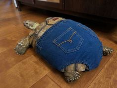 "29 Chonky Bois That Definitely Qualify As Absolute Units - Funny memes that ""GET IT"" and want you to too. Get the latest funniest memes and keep up what is going on in the meme-o-sphere. Animals And Pets, Baby Animals, Cow Head, Post Animal, Tortoises, Cute Funny Animals, Animal Memes, Cute Pictures, Dog Pictures"