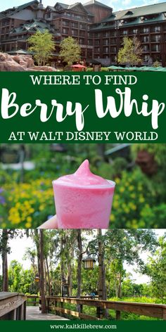 Where To Find Berry Whip at Walt Disney World Disney World Secrets, Disney World Food, Disney World Restaurants, Disney World Planning, Walt Disney World Vacations, Disney World Tips And Tricks, Disney Tips, Disney World Resorts, Disney Ideas