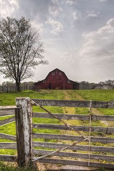 I love the barn photos where the old fence is incorporated into the foreground!!! LOVELY
