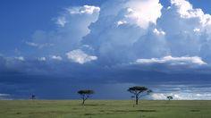 Storm Over the Savannah, Masai Mara National Reserve, Kenya