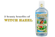 5 Amazing Beauty Benefits Of Witch Hazel