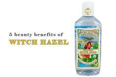 5 Beauty Benefits of Witch Hazel