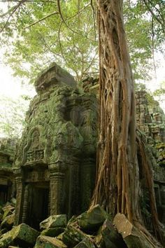 I can't wait to explore these hidden places once I get out of school. Evie and I are taking a trip!! travel #travelinspiration #Cambodia