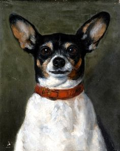 Joséphine Bowes, Portrait of a dog, 19th century  via Animalarium