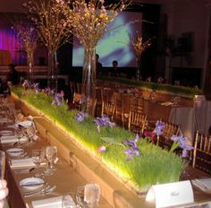 Jenny B Wedding - wheat grass Wheat Grass, Dolores Park, Table Decorations, Bbc, Wedding Ideas, Dishes, Home Decor, Tops, Tablewares