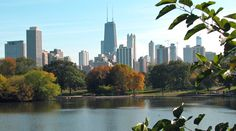 Best Places to See Fall Leaves in Chicagoland, In the City and Beyond