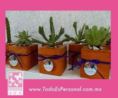 maceta madera cactus cactaceas detalles evento mesa oficina recuerdo original vivo plata bolo economico idea manualidades boda bautizo xv años primera comunion
