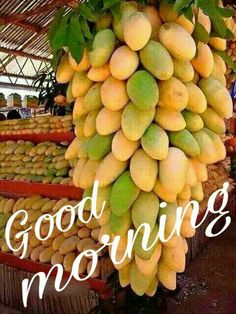 Good Morning Happy Morning, Good Morning Flowers, Good Morning Good Night, Good Morning Wishes, Good Morning Quotes, Gd Morning, Morning Pics, Morning Blessings, Morning Greetings Quotes