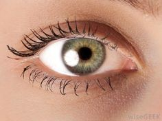 Ocular myasthenia gravis is a type of autoimmune disease that causes chronic fatigue of the eye muscles. The main signs of...