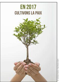 Cette carte vous plait ? Profitez-en tant qu'il est encore temps de souhaiter une bonne année 2017 à vos amis avec une jolie #carte envoyée par La Poste en quelques clics ! #voeux #BonneAnnée #voeux2017 #amour #love #paix #peace #paz  Carte Cultivons la paix pour envoyer par La Poste, sur Merci-Facteur ! Nouvel An, Php, Thanks, Two Hands