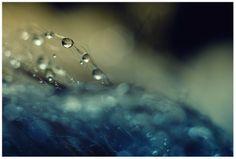 splash by tka4u4a