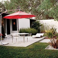 small, modern backyard