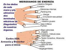 Meridianos de Energia VitaLys Centro de Terapias Alternativas y Energéticas