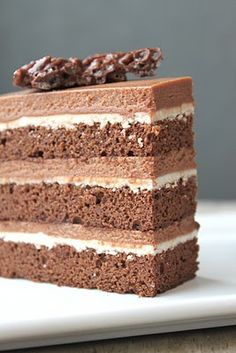 ... hazelnut cake chocolate hazelnut cake with praline chocolate crunch