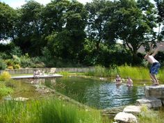 Natural Swimming Ponds – The Owner-Builder Network