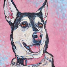 """Lola the Siberian Husky and German Shepherd Mixed Breed Dog Custom Pet Portrait Painting in Acrylic Paint on 10"""" x 10"""" Canvas from Pet Portraits by Bethany. #petportrait #custmopetportrait #petart #dogart #dogportrait #Huskies #Mutts"""