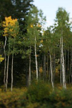 Visit Utah Valley: Photo Locations