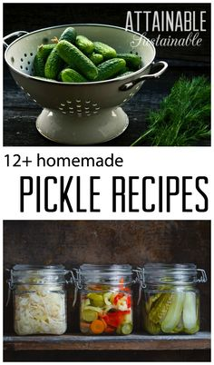 Pickling is easy. Preserve the harvest: Pickled cucumbers, beets, onions, peppers for home canning. Homestead ~ food preservation ~ recipes
