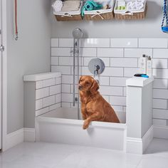The 36 x Rectangular Molded Stone Mop Sink is designed to connect to a drain pipe. Mudroom Laundry Room, Laundry Room Remodel, Laundry Room Design, Laundry Room With Sink, Mud Room Lockers, Dog Room Design, Laundry Area, Dog Bathing Station, Dog Tub