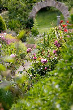 Knitson Old Farmhouse Garden, Dorset, Photo by Dianna Jazwinski