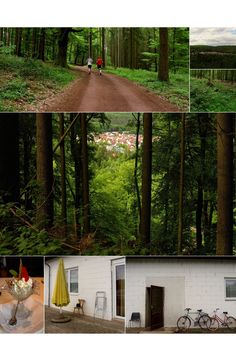 Just a Ballad / Mettlach Nature in Germany by M. Eye Photography, Germany, Nature, Plants, Naturaleza, Deutsch, Plant, Off Grid, Natural