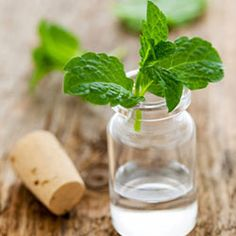 DIY Spray Mist for 2nd Day Curls: Mix 1/2 cup of water 1/4 teaspoon jojoba oil, two drops of tea tree oil, and one drop each of lavender and peppermint essential oils. Shake to combine (you'll have to re-shake it before each use, because the jojoba oil tends to float). Mist all over your hair.