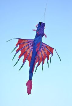 amazing kites photos - Buscar con Google