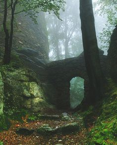 Looks … – Forest ruins, Karkonosze Mountains, Poland. Nature Architecture, Nature Aesthetic, Fantasy Landscape, Abandoned Places, Beautiful Landscapes, Nature Photography, Portrait Photography, Travel Photography, Wedding Photography