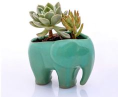 Elephant planter for succulents ceramic planters animal planters for her gifts for mom desk plants housewarming gift Ceramic Planters, Planter Pots, Clay Planter, Diy Garden, Fence Garden, Garden Art, Cacti And Succulents, Indoor Plants, Indoor Garden