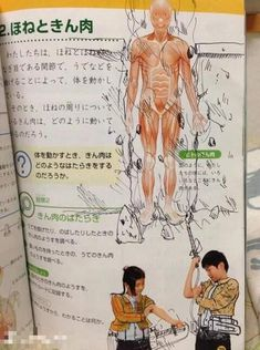 « shingeki no kyojin random memes Aot Memes, Funny Memes, Hilarious, Anime Meme, Anime Outfits, All Anime, Manga Anime, Attack On Titan Meme, Familia Anime