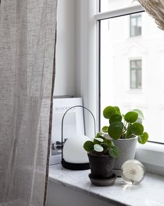 Window Sill Ideas for Living Room Color - Living Room : Home Decorating Ideas Decor, Window Ledge Decor, Window Sill Decor, Windows, Window Decor, Window Sill, Ledge Decor, Room Colors, Window Room