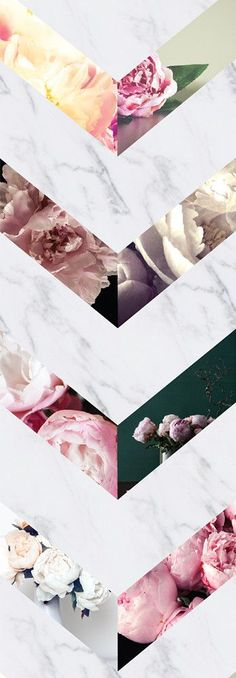 Zig Zag Simoney Peonies - Paste the Wall (Traditional Paper) / Color / 8 ft x 12 ft