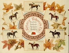 Album of celebrated American and English running horses (back cover) ~ by Kinney Bros.)