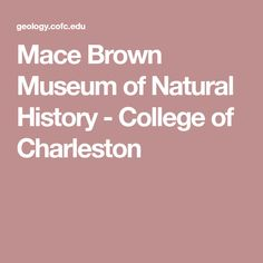 Mace Brown Museum of Natural History - College of Charleston