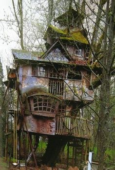 Abandoned Tree House With Moss by honorablealcove5074