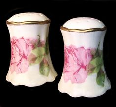 c.1900 AUSTRIAN Porcelain Salt & Pepper Shakers w/ Pink Roses Salt Pepper Shakers, Salt And Pepper, Antique Dishes, Kitchen Accessories, Vienna, Pink Roses, Candle Holders, German, Porcelain
