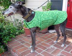 Greyhound Dog Coat, Green Shamrock Clover Pint Fleece with Green Fleece Lining  www.TheThimbleAndHound.com