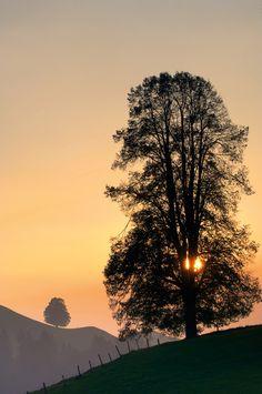 Autumn Photography Tips: 19 Shoot sunrise and sunset